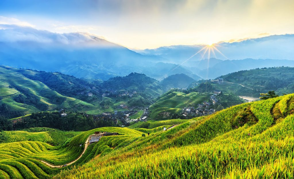 The view of the rice terraces
